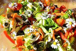 salad-1974757_1280